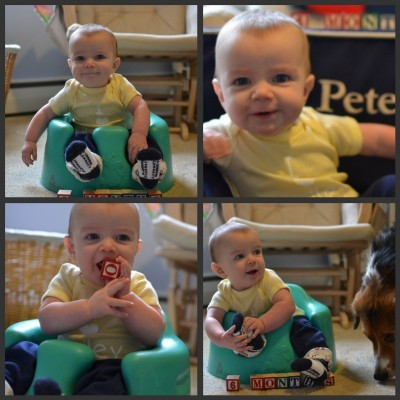 6 month collage