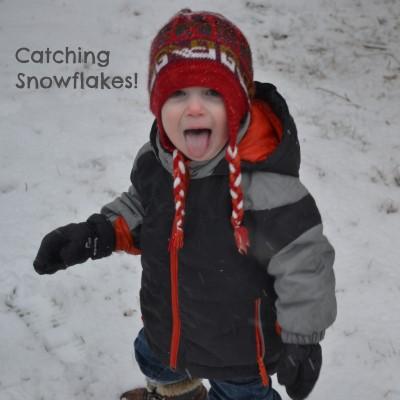 snowflake catching