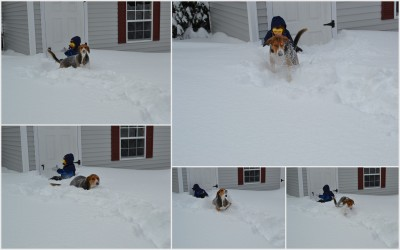 Snow Bailey